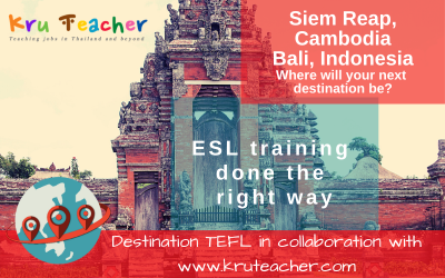 Destination TEFL Banner Small